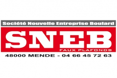 SNEB logo