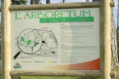 arboretom1-min