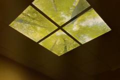 Roux-chambre-funeraire-puit-lumière-4