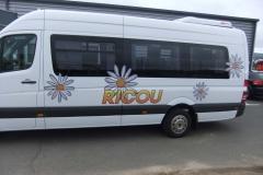 Camionette-Ricou-1