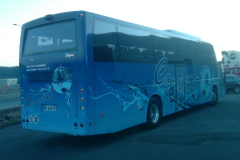 bus-constant