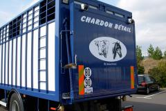 chardon-arrière-de-bétaillère