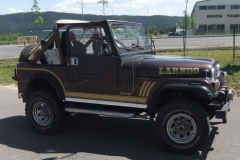 personnalisation doré jeep